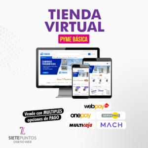 TIENDA-VIRTUAL-PYME-BASICA
