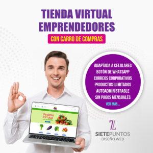 Paginas web emprendedores