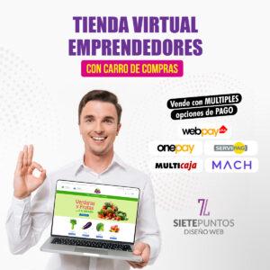 tienda-virtual-emprendedores-webapy